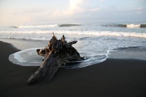 Costa Rica Dawn