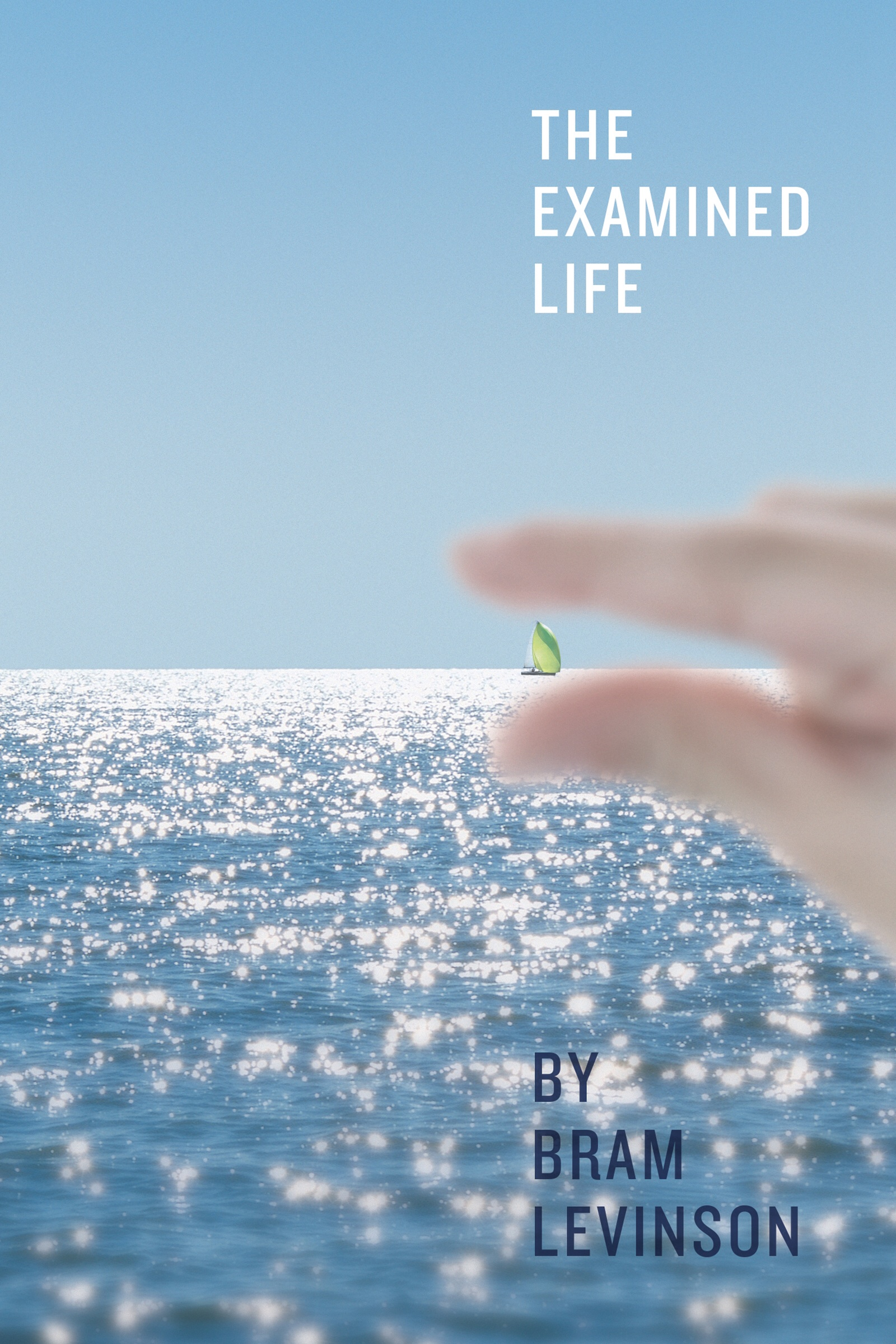 The Examined Life >> The Examined Life Book Release Bramlevinson Com